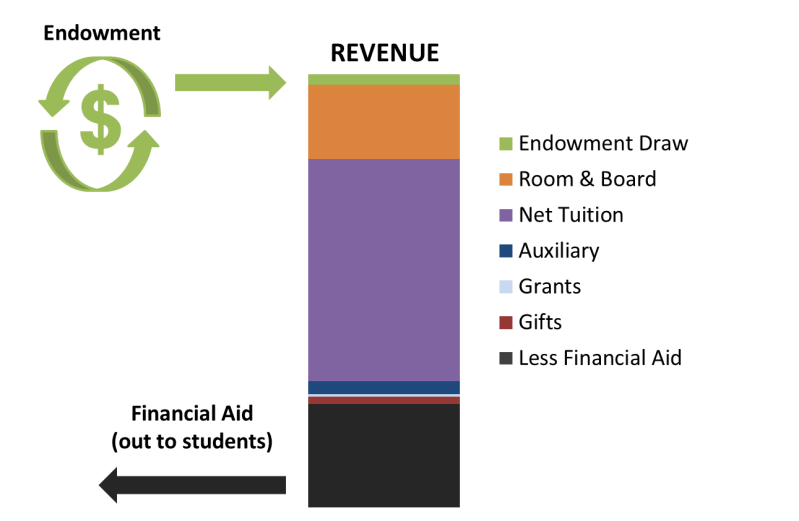 Revenue and Endowment